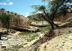 Erigavo Valley in Somaliland
